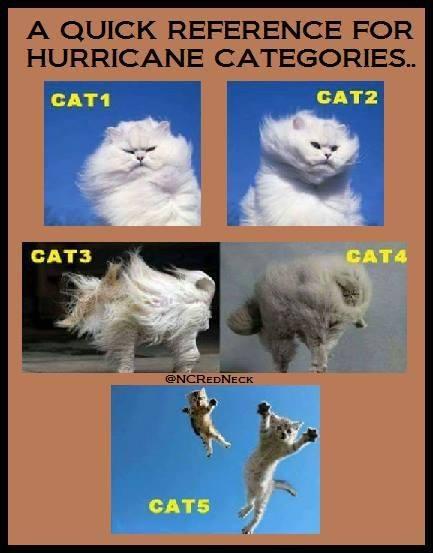 Hurricane Categories.jpg